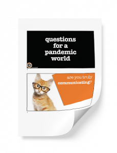 Questions for a Pandemic World PDF